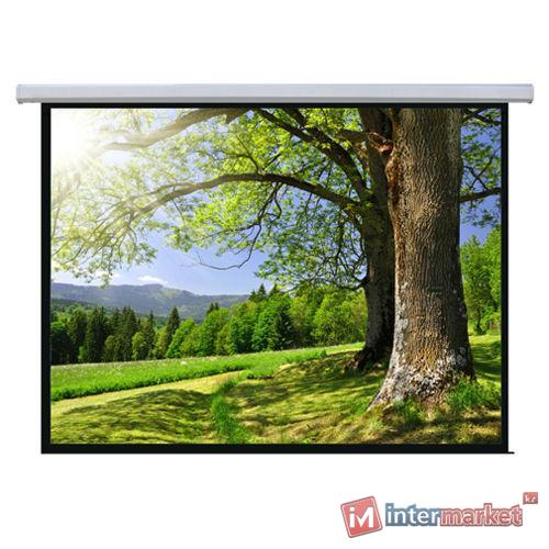 Экран моторизованный Memory Specialist MSPSAB167 1:1 (3x3 м)